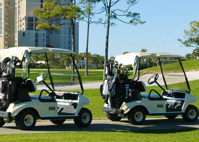immagine di una golf car rappresentativa della categoria batteria trazione leggera